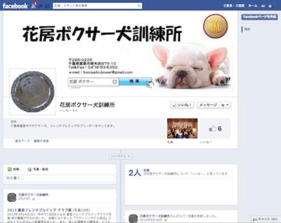 Facebook_boxer_3
